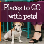 Things to Do with Pets in Kansas City